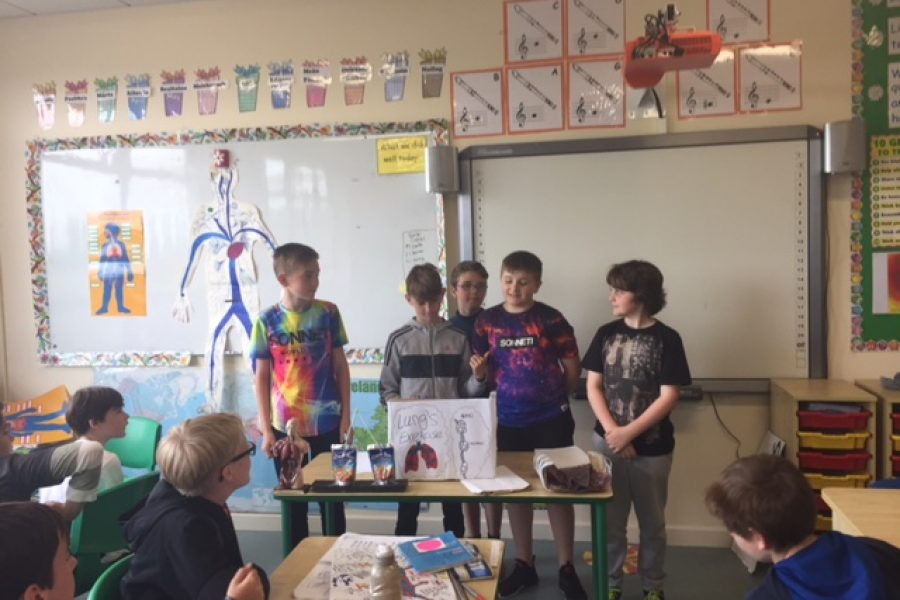 Maureen's 4th class explain some anatomy!